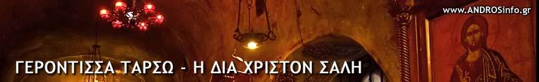 www.ANDROSinfo.gr